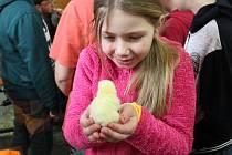 V rámci čtvrtého ročníku velikonočního programu záhlinického Muzea Františka Skopalíka se děti naučily péct jidáše, malovat kraslice, plést tatary a seznámily se s domácími zvířaty.
