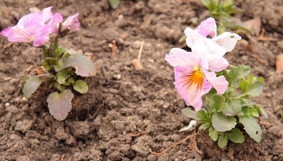 Jaro v Květné zahradě v Kroměříži.