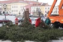 Kácení vánočního stromu v Kroměříži