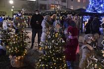 """Výstava """"NEJ"""" vánočních stromečků v Holešově."""