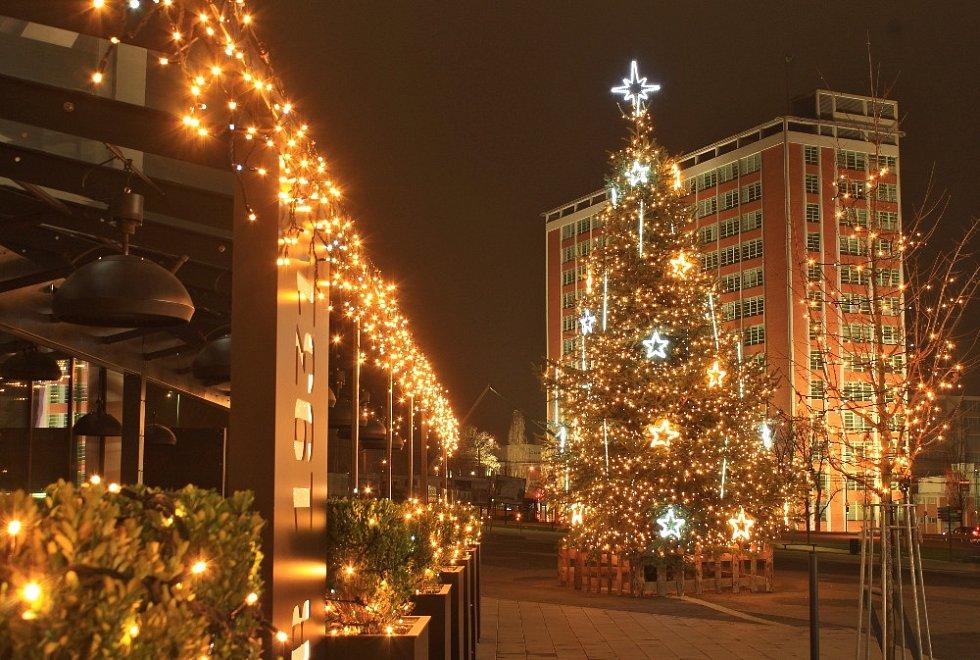 Vánoční strom 2020 u Obchodního domu Zlín