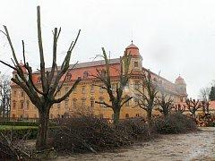 Zámecký park v Holešově prořídl o zhruba pět stovek starých stromů. Holá místa však vedení města slibuje nahradit novou výsadbou.