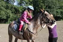 Na koňském táboře v Podhradí u Brusného se děti učí nejenom jak na koni jezdit, ale také jak se o něj správně starat.