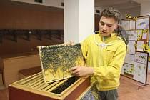 Na patnáctém ročníku bystřického Medového dnu nechyběla ochutnávka medů, nabídka včelí kosmetiky, výrobků z vosku, ukázka úlu, ani biologie včely.