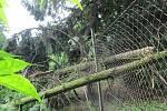 Popadané stromy ničily ploty - následky bouřky 28.7.2020