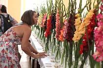 Mezinárodní výstava gladiol v holešovském zámku.