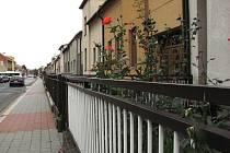 Dva manželé, kteří žili v ulici Stoličkova v Kroměříži, se v neděli 8. října rozhodli, že společně ukončí svůj život.