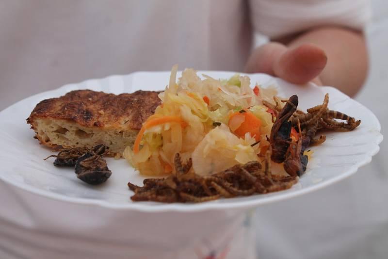 Poslední květnový víkend patřil v Kroměříži dobrému jídlu. Konal se zde již šestý ročník Moravi Food Festivalu. Letošním tématem bylo zelí.
