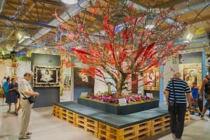 Jubilejní čtyřicátý ročník výstavy Floria Léto skončil o posledním srpnovém víkendu na kroměřížském výstavišiti, nabídl mimo jiné i charitativní fotografie známých osobností či květinovou výzdobu kostela svatého Jana Křtitele.