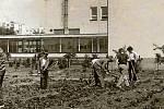 3. ZŠ Holešov, ŠKOLNÍ ZAHRADA. Součástí školy je nově zrekonstruované školní hřiště s umělým povrchem a školní zahrada, kterou ke své činnosti využívá také školní družina.