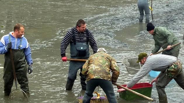 Tradičnímu výlovu rybníků letos vyšlo počasí a kvasičtí rybáři tak oficiálně ukončili chovnou sezonu.