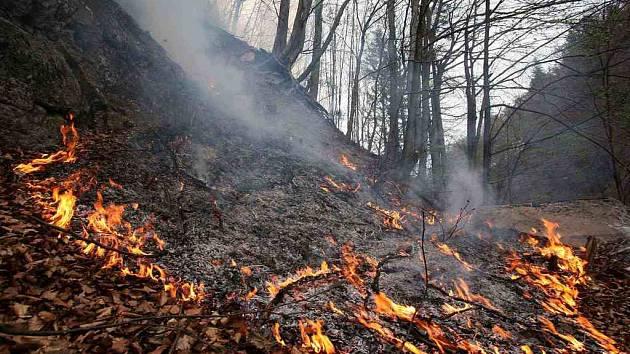 Krajští hasiči likvidovali požár suché lesní trávy a mladého lesa, který vznikl v polovině března u rekreačního střediska Troják. Příčinou byla nedbalost při pálení klestu a rozšířil se vlivem větru.