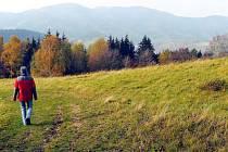 Hostýnské vrchy, Pardus.