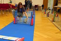 V neděli 11. prosince 2016 trénovaly v Kulturním domě Zdounky členky tamního klubu Králičí hop své králíčky na závody. Klub vznikl na podzim loňského roku. Členky získávají v soutěžích úspěchy.