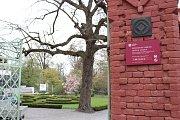 Národní centrum zahradní kultury v Podzámecké zahradě v Kroměříži.