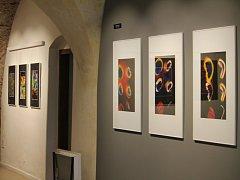Netradiční výstavu hostí Muzeum Kroměřížska, jedná se o pohled do nanosvěta, který není pouhým okem vidět, autorem je jaderný fyzik Peter Kozma. Návštěvníci ji mohou vidět až do 22. května.