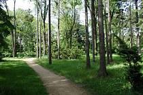 V bystřickém parku Zahájené stromy k zemi budou padat jako první.