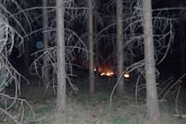 U obce Brusné hořel les.