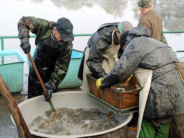 Davy lidí zamířily v sobotu 18. října na tradiční výlov rybníku v Jeseníku nad Odrou.