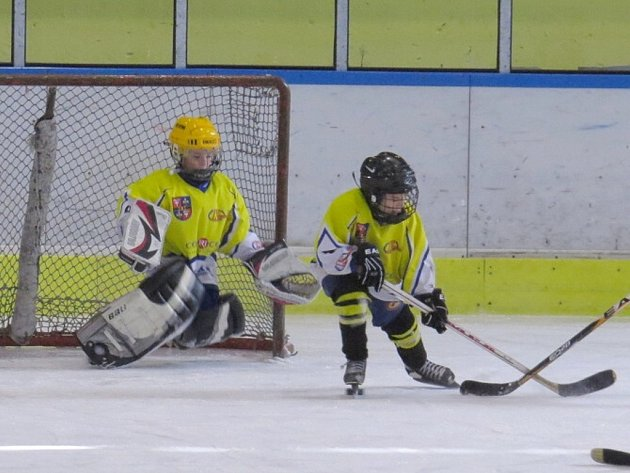 Zimní stadion ve Studénce  obsadili o víkendu mladí hokejisté, kteří soupeřili na mezinárodním turnaji v minihokeji dětí roč- níku narození 2004 až 2006 Studénka cup 2013.
