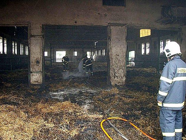 Při požáru kravína ve Studénce v neděli 13. června se podařilo zachránit všechny krávy.