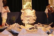 Forma Radegasta je umístěna ve frenštátském domu kultury, kde jej může vidět široká veřejnost.