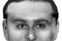 Policie pátrá po muži ve věku okolo 25 až 30 let, výšky 180 centimetrů, krátkých hnědých vlasů, oči měl propadlé blízko u sebe a na bradě vousy, takzvanou bradku. Pachatel byl oblečen do zelené mikiny a na krku měl šňůrku se zavěšeným mobilním telefonem.