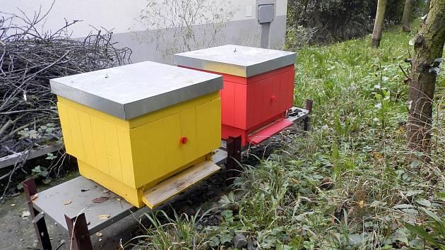 Novojičínská nemocnice vybudovala ve svém areálu dva včelí úly.