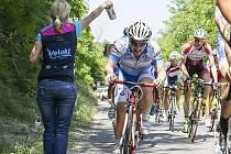 V nových modro-bílých dresech vstoupili do letošní sezony cyklisté novojičínské stáje Team Forman Cinelli, kteří se neztratili ani na závodech v zahraničí.