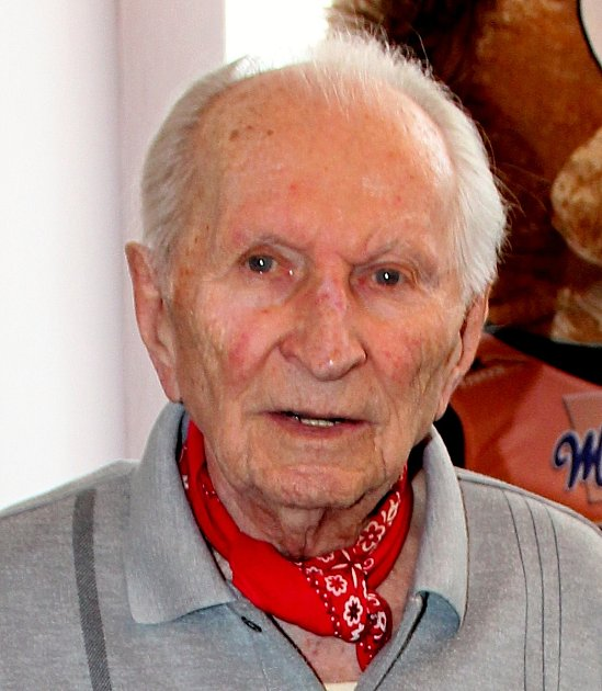 ANKETA DENÍKU. František Pitucha, Frenštát pod Radhoštěm.