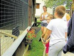 Venkovní expozici zvířat, zejména ptáků, si mohou lidé v Bartošovicích prohlédnout v doprovodu průvodce.