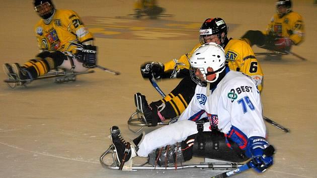 Turnaj ve sledge hokeji nabídl spousty zajímavých bitev. Domácí mužstvo skončilo na 2. místě.
