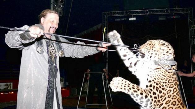 Představení cirkusu Jo-Joo