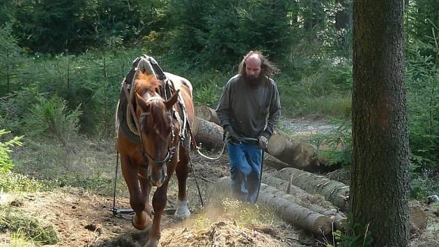 Kočí, lanovkáři, pilaři, traktoristy i lesní dělníci stávkují.