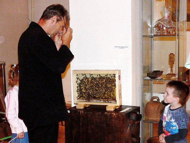 Na výstavě, věnované století včelařství ve Štramberku, jsou mímo jiné k vdění i živé včely.