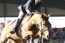 V poháru žen, který se konal ve Frenštátě pod Radhoštěm, zvítězila Lucie Strnadlová na koni Eura 1 (Stáj SKL Trojanovice).