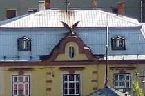 Sošku sokola, která léta zdobila budovu frenštátské Sokolovny shodila větrná smršť.