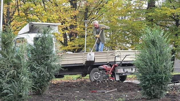 Každý rok před Vánocemi se do lesů vypraví nějaký jedinec s pilkou. Potají si uřezat vánoční stromek však už není výsadou pouze lesních porostů. Lidé kradou také v městských parcích.