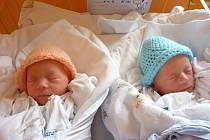 Dvojčátka MARIANNA a PAVEL V., Nový Jičín, nar. 2. 4. 2013, Marianna 44 cm, 2,17 kg, Pavel 43 cm, 2,02 kg. Nemocnice Nový Jičín.