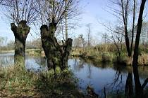 Pustějov, to je i jezero Kaménka.
