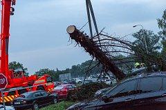 Zásah hasičů u vyvráceného stromu v Mošnově.