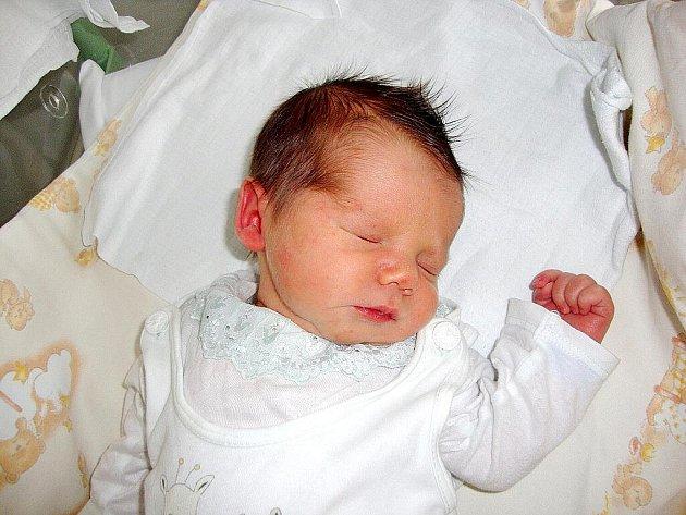 Alan Hanousek, Nový Jičín, nar. 3. 2. 2010, 49 cm, 3,40 kg, nemocnice Frýdek-Místek.