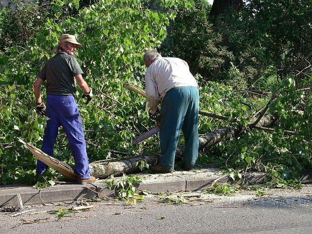 Větrná smršť, která se prohnala i Novojičínskem, polámala a poškodila stovky stromů.