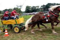 Téměř tři sta diváků mělo možnost zhlédnout atraktivní závody koňských spřežení a parkurového skákání, které uspořádal i za finančního přispění města formou grantu na kolbišti v Loučce místní Jezdecký klub chovatelů koní.