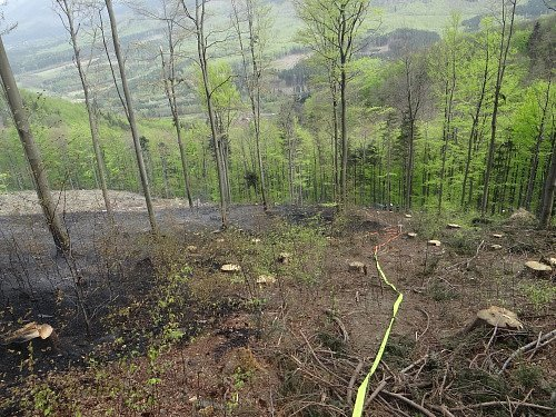 Hašení lesního požáru.