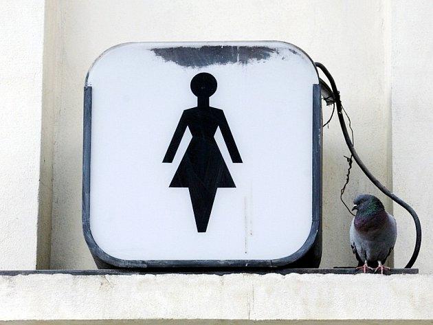 V Pohoři se nakonec nových záchodů dočkají, i když tomu předcházely dlouhé přípravy.
