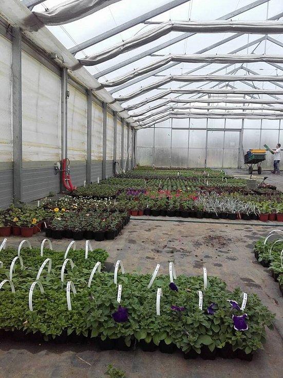 Pěstuje a prodává rostliny, ale pomáhá také se sadovými úpravami, dále zakládá, stará se a upravuje rovněž rodinné zahrady.