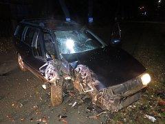 Žena nezvládla řízení a narazila do stromu.