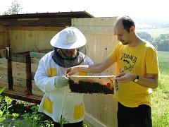 Místostarosta Ondřej Syrovátka pomáhá včelaři Jiřímu Schindlerovi, který se o radniční úly stará.