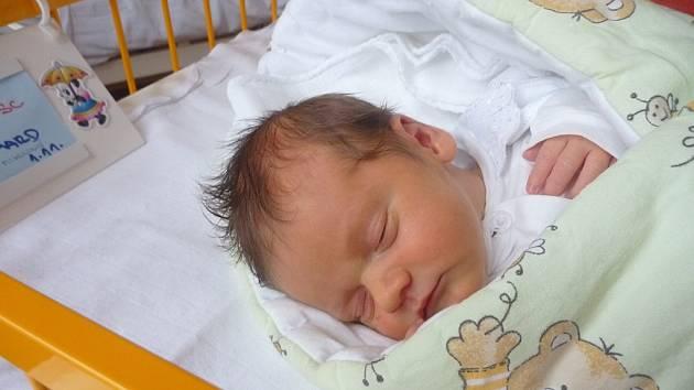 RICHARD PLHAL, Hladké Životice, nar. 1. 11. 2012, 49 cm, 3,15 kg. Nemocnice Nový Jičín.